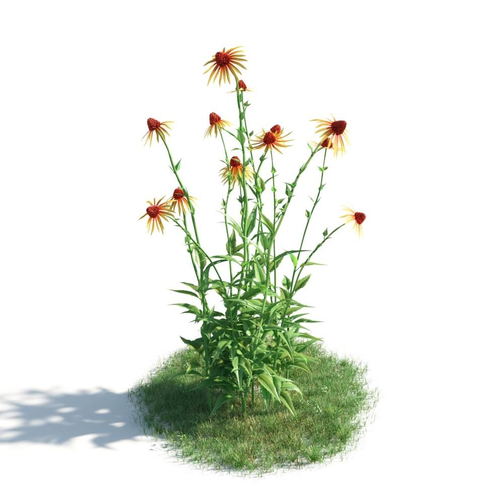 plant 33 AM183 Archmodels