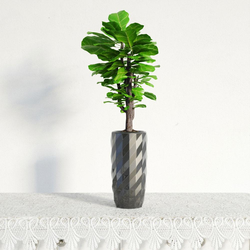 plant 39 AM141 Archmodels