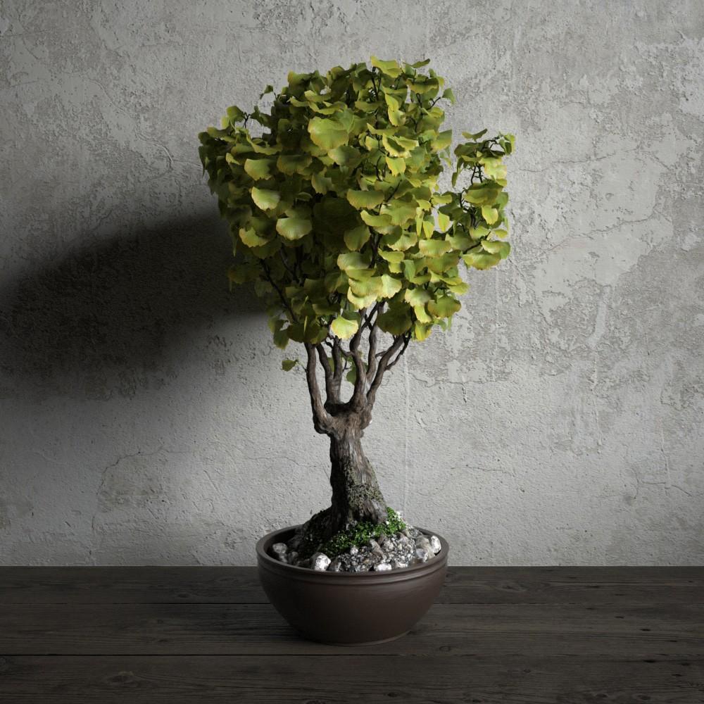 plant 29 AM173 Archmodels