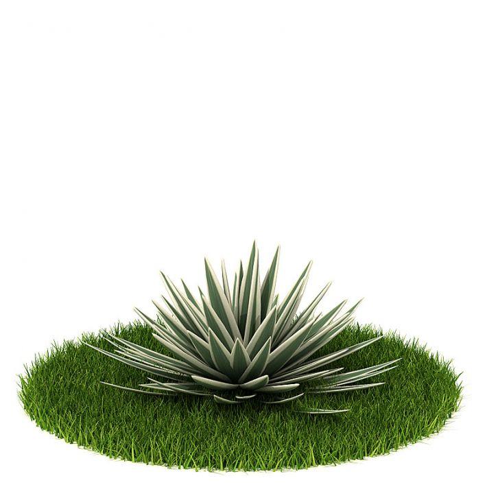 Plant 55 AM42 Archmodels