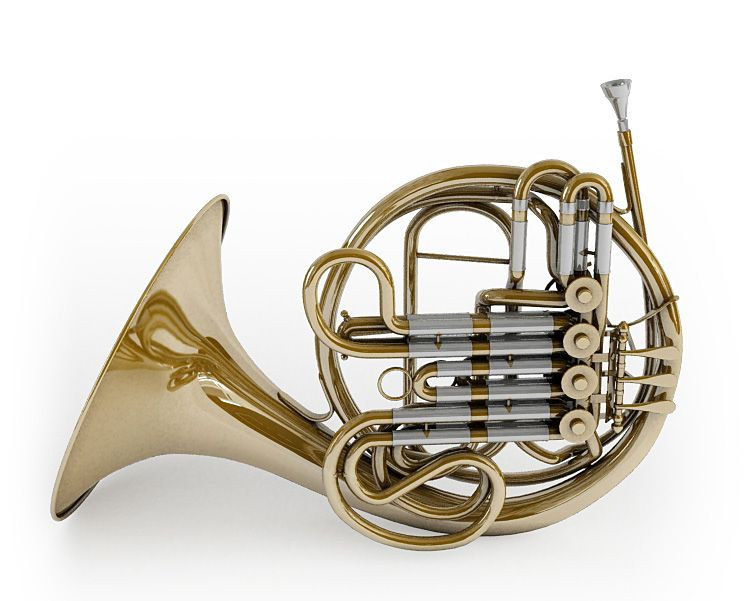 French horn 26 AM67 Archmodels