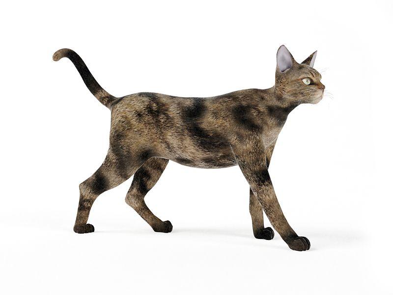 cat 47 am83