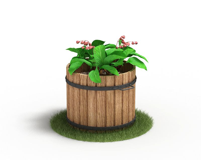 Plant 59 AM4 for Cinema4D Archmodels