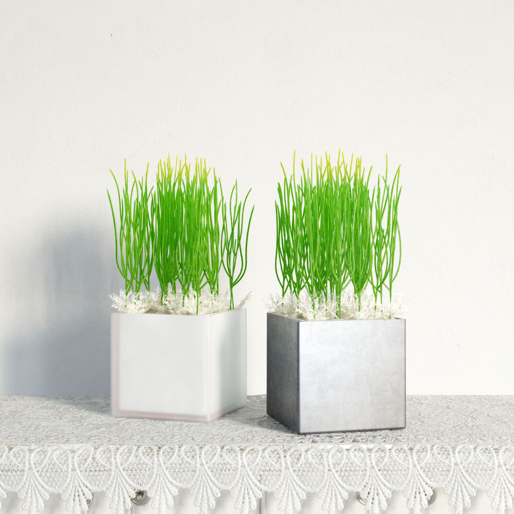 plant 25 am141