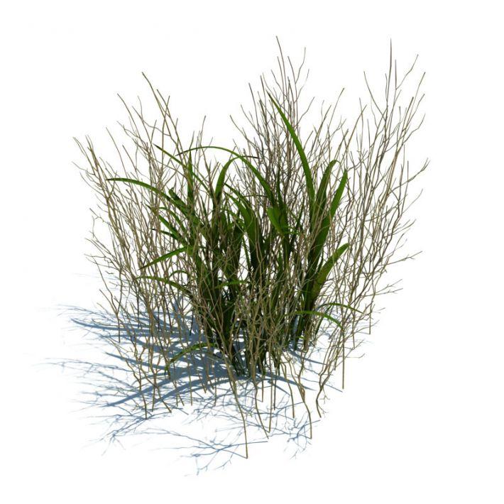 simple grass 068 am124