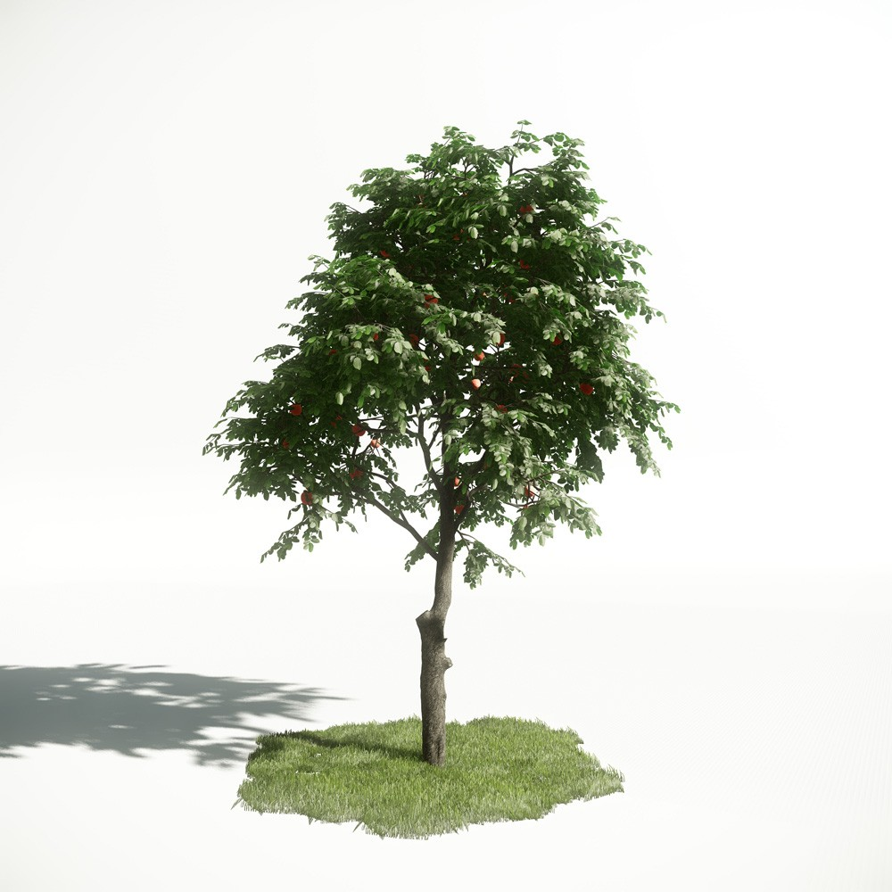 Tree 9 AM1 for CryEngine Archmodels