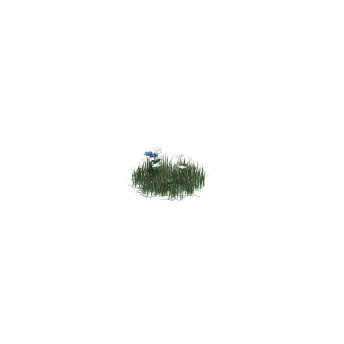 simple grass small 121 am124