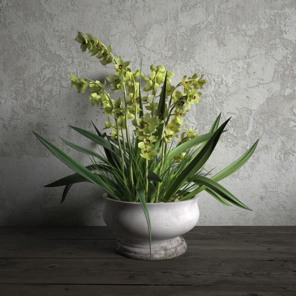 plant 54 AM173 Archmodels
