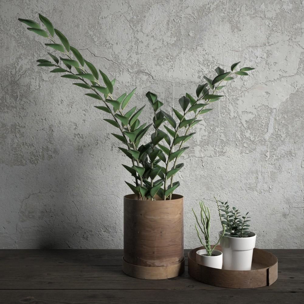 plant 33 AM173 Archmodels