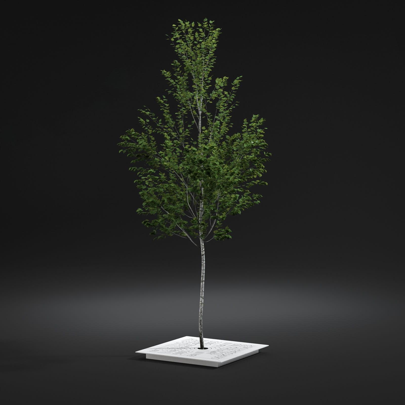 pavement tree 5 AM211 Archmodels