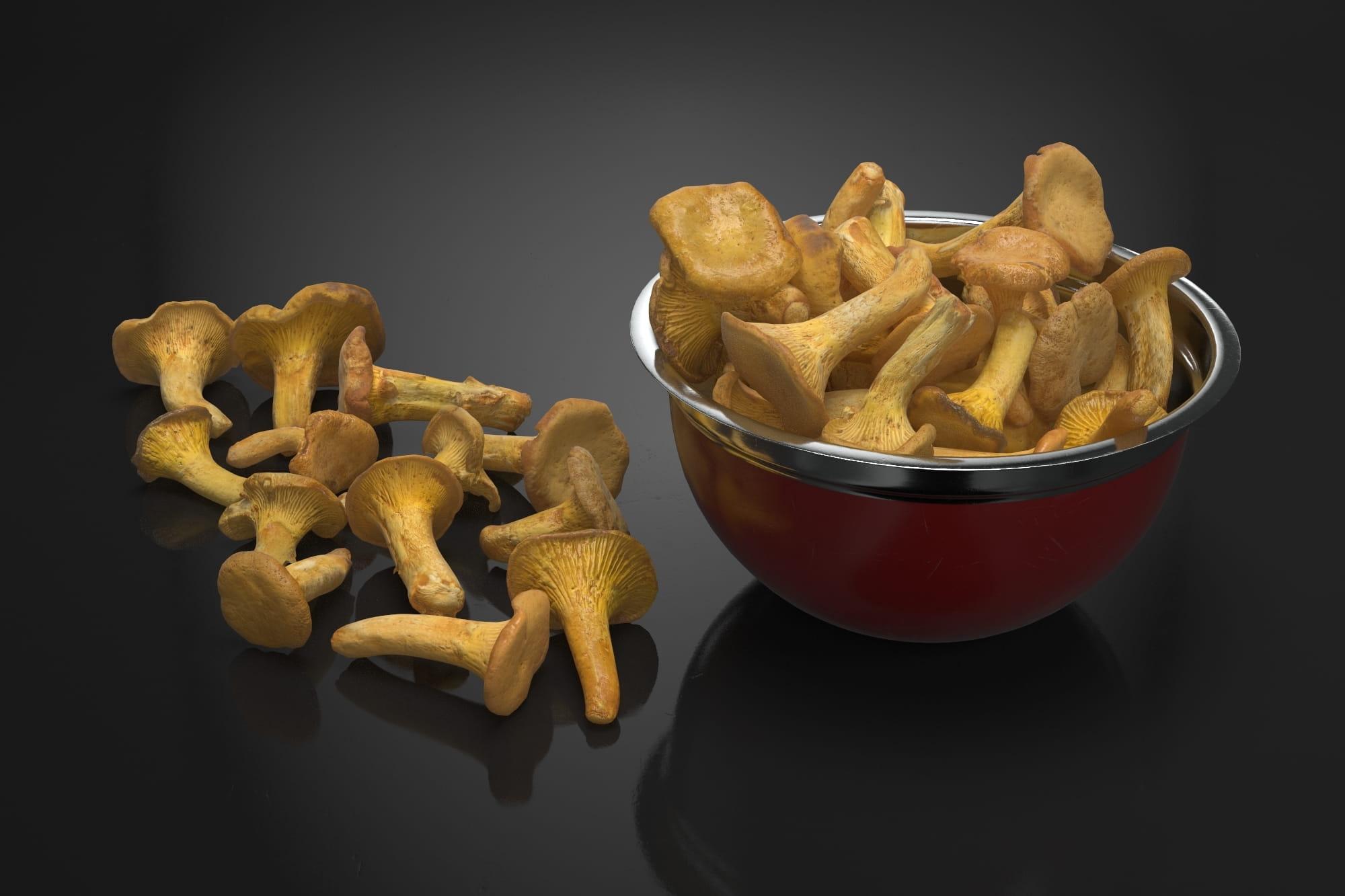 Chanterelle mushrooms 1 AM224 Archmodels