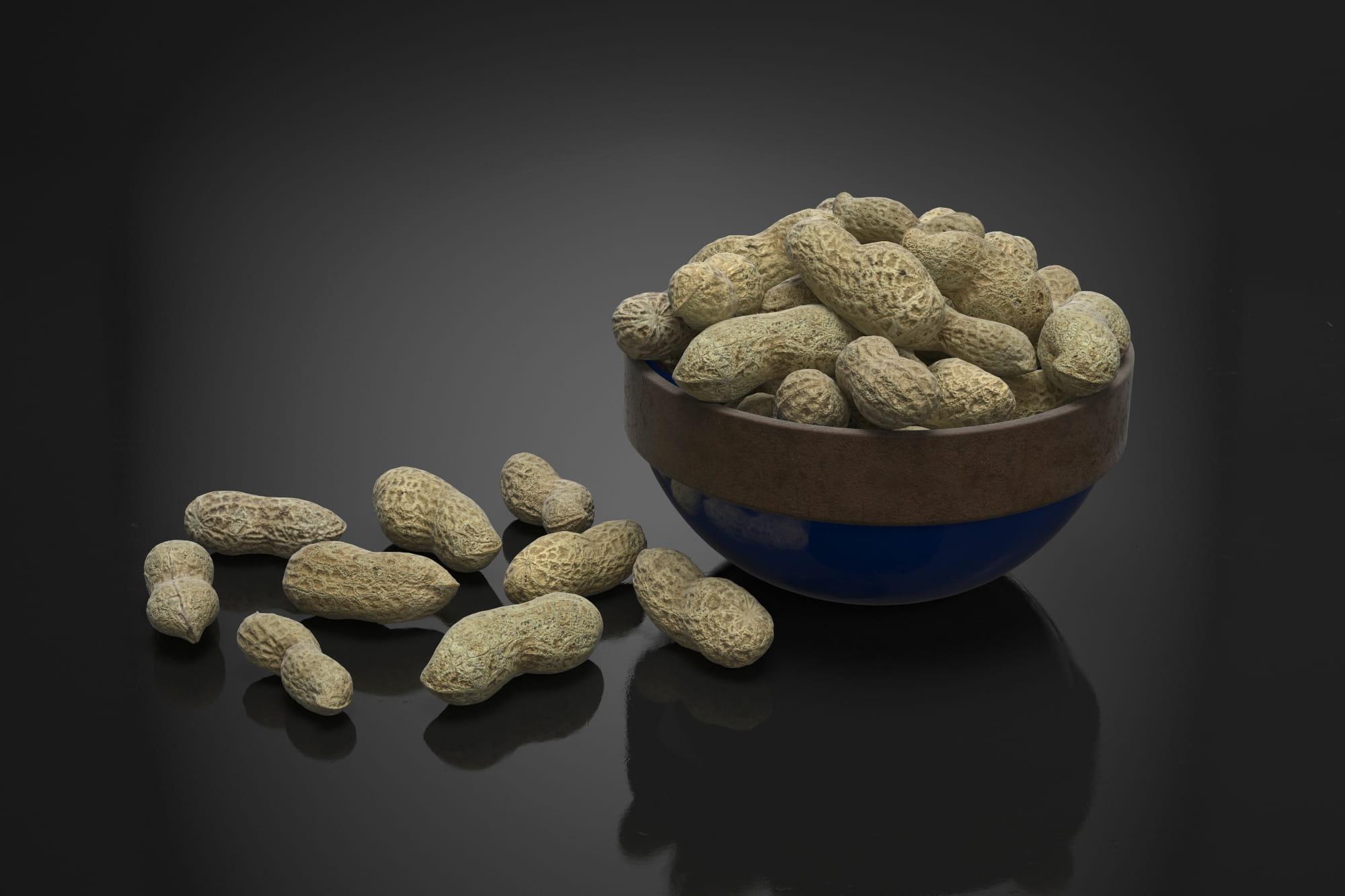 Peanuts 11 AM224 Archmodels
