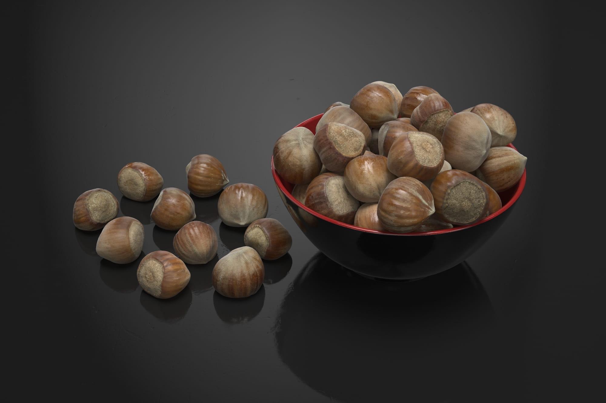 Hazelnuts 13 AM224 Archmodels