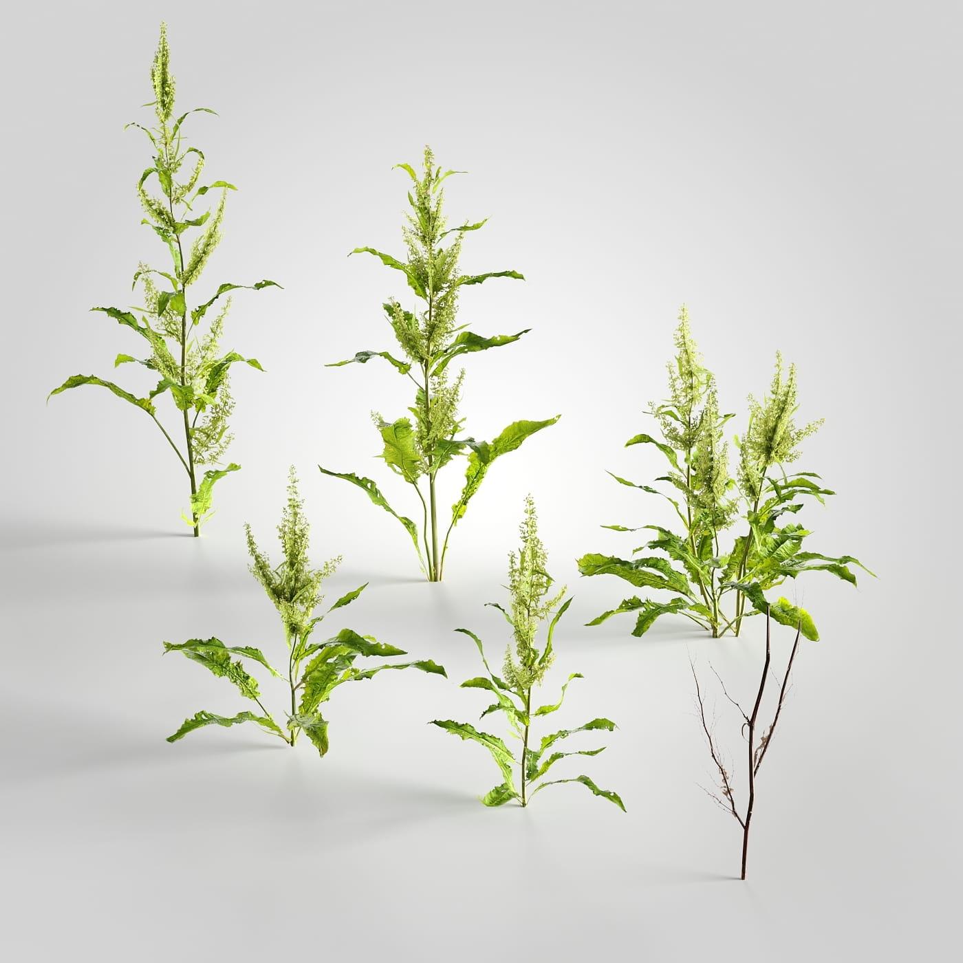 plant set 5 AM226 Archmodels