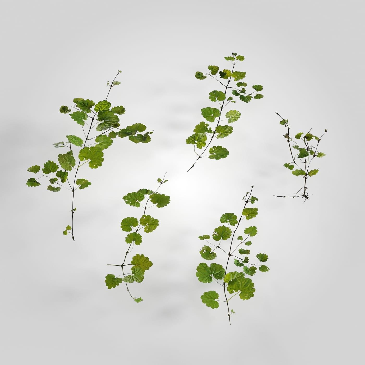 plant set 6 AM226 Archmodels