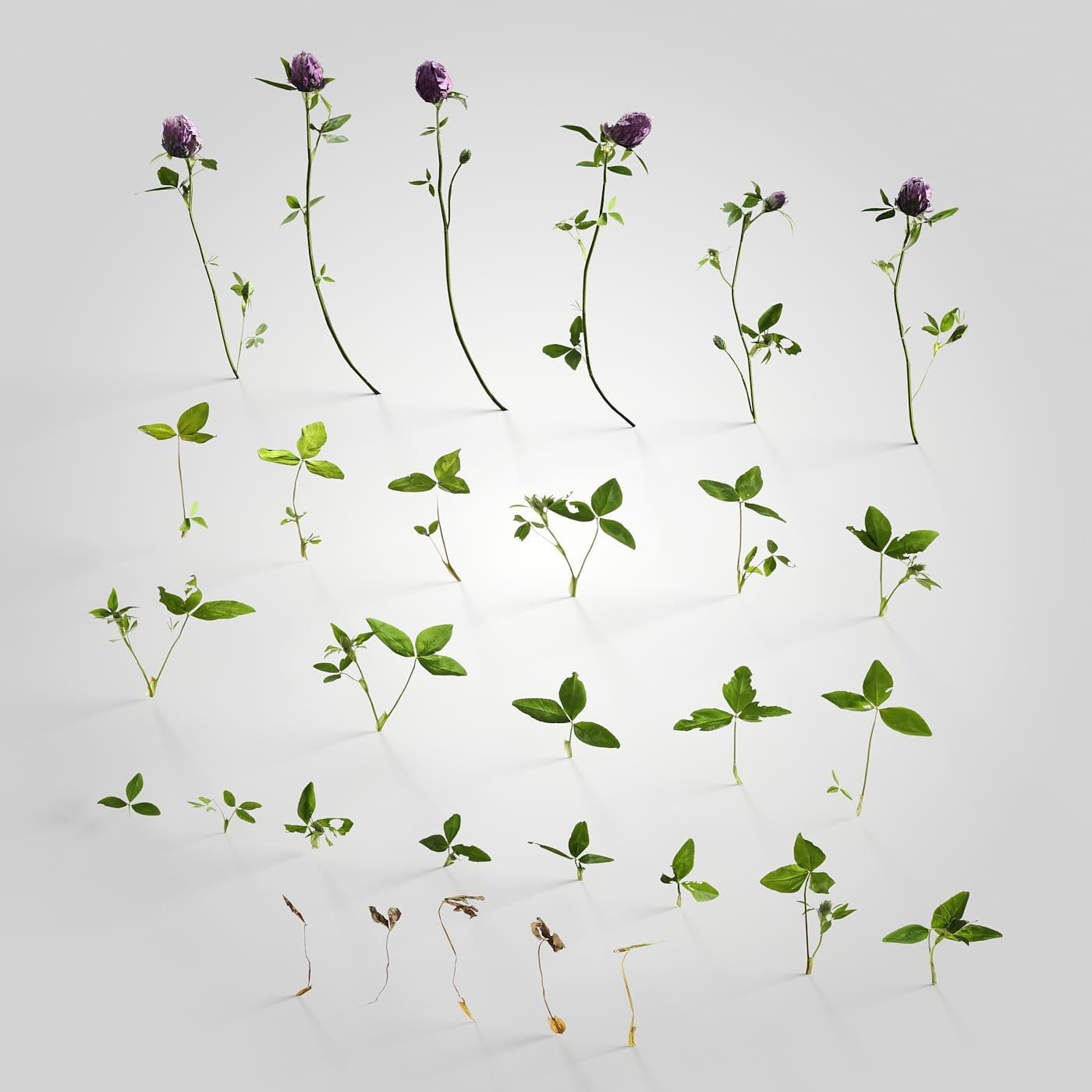 plant set 7 AM226 Archmodels