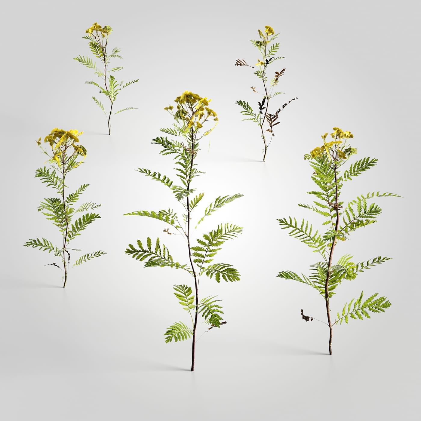 plant set 12 AM226 Archmodels