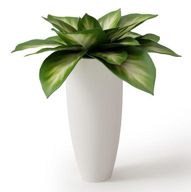 Plant 05 Archmodels vol. 66