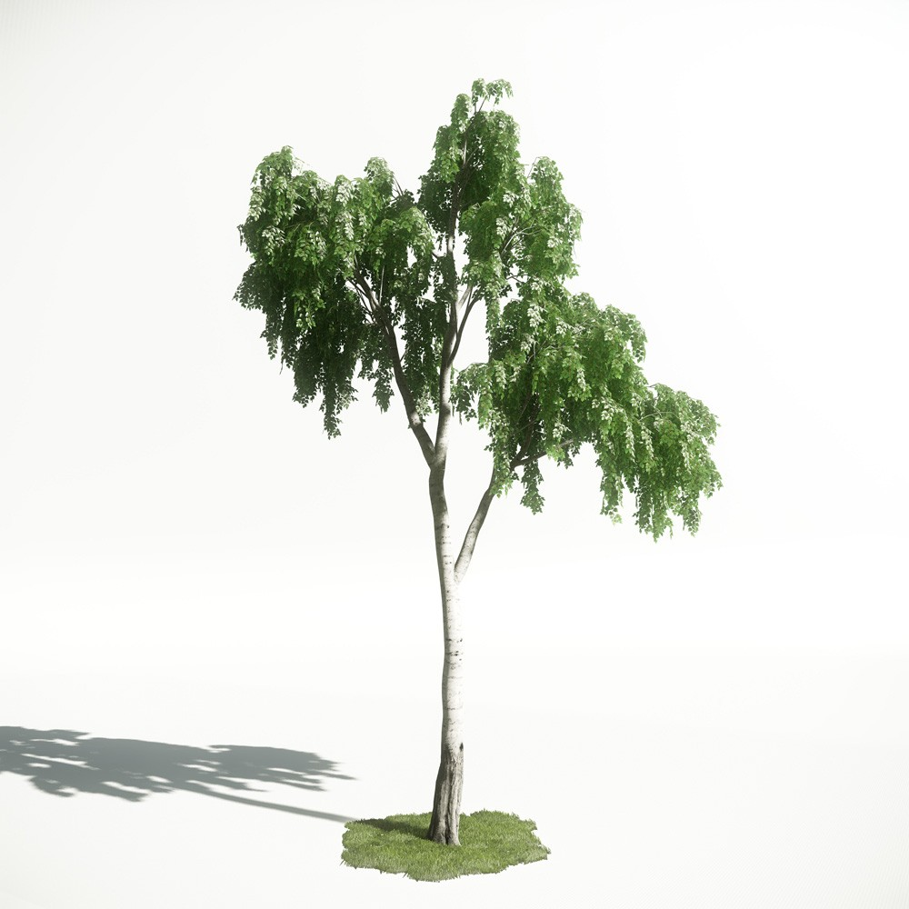 Tree 17 AM1 for CryEngine Archmodels