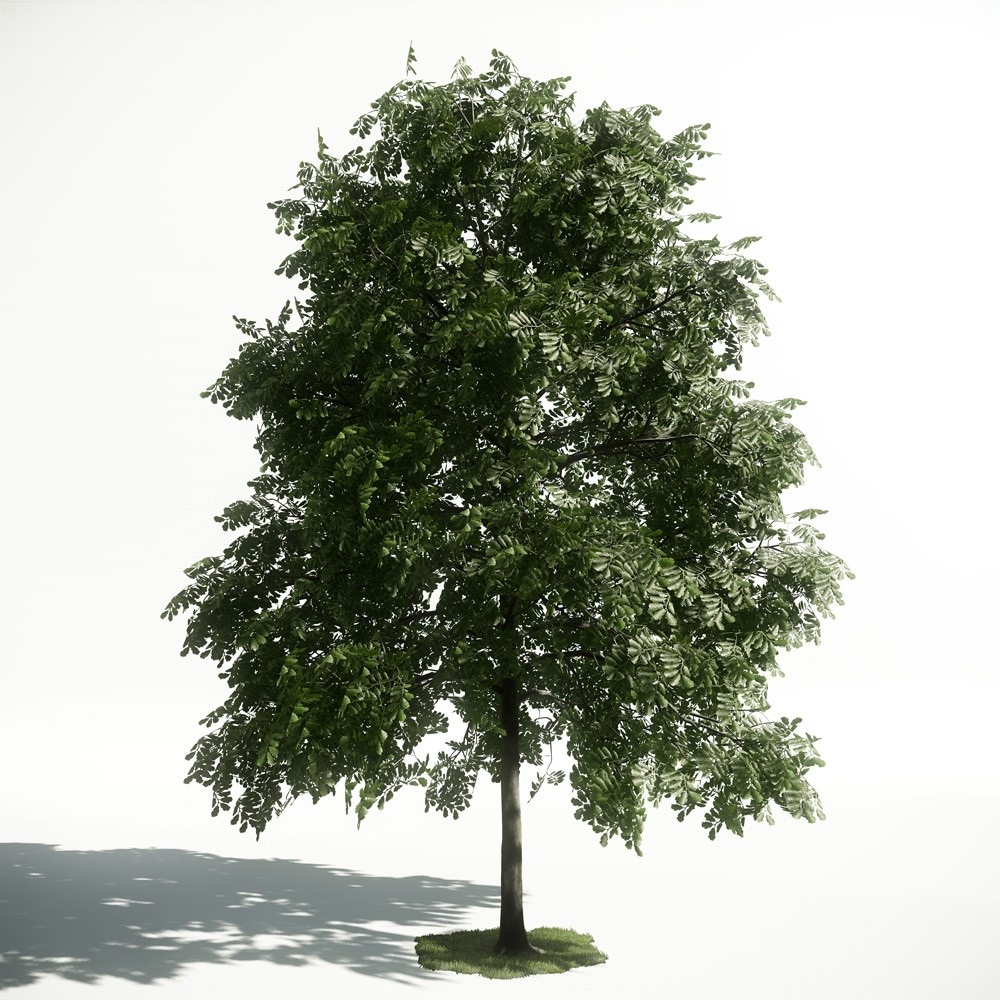 Tree 32 AM1 for CryEngine Archmodels