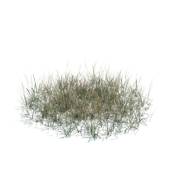 simple grass large 138 AM124 Archmodels