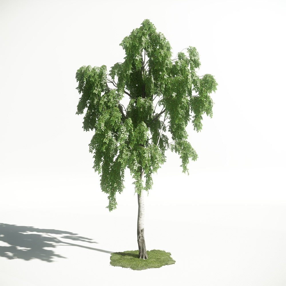 Tree 18 AM1 for CryEngine Archmodels