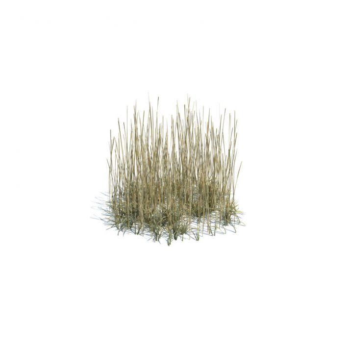 simple grass medium 140 AM124 Archmodels