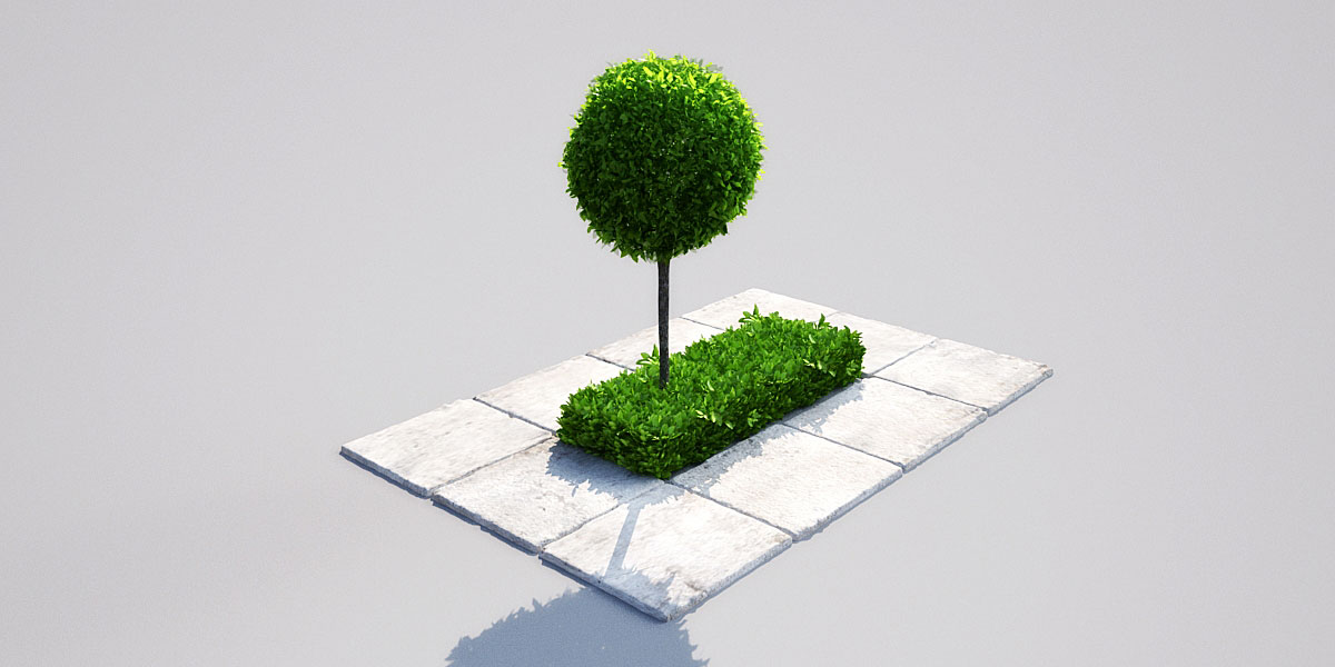 hedge 16_02 AM148