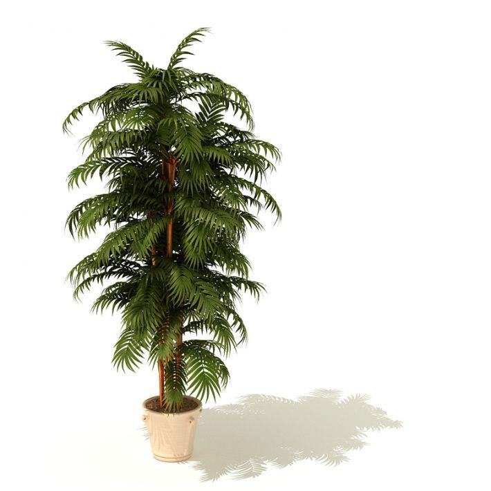 plant 6 AM41 Archmodels
