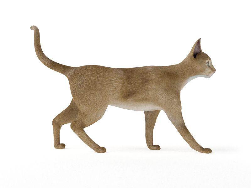 cat 51 AM83 Archmodels