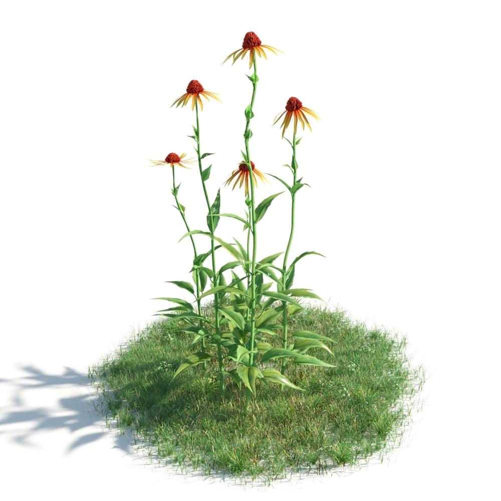 plant 32 AM183 Archmodels