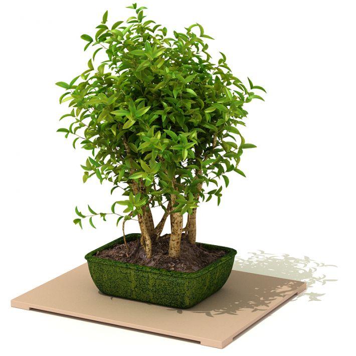 plant 40 AM41 Archmodels