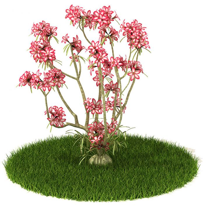 Plant 44 AM42 Archmodels