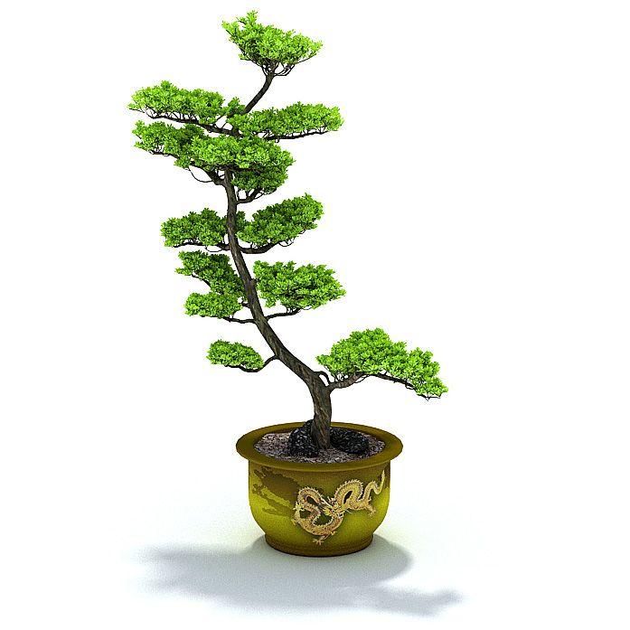 Plant 46 AM31 Archmodels