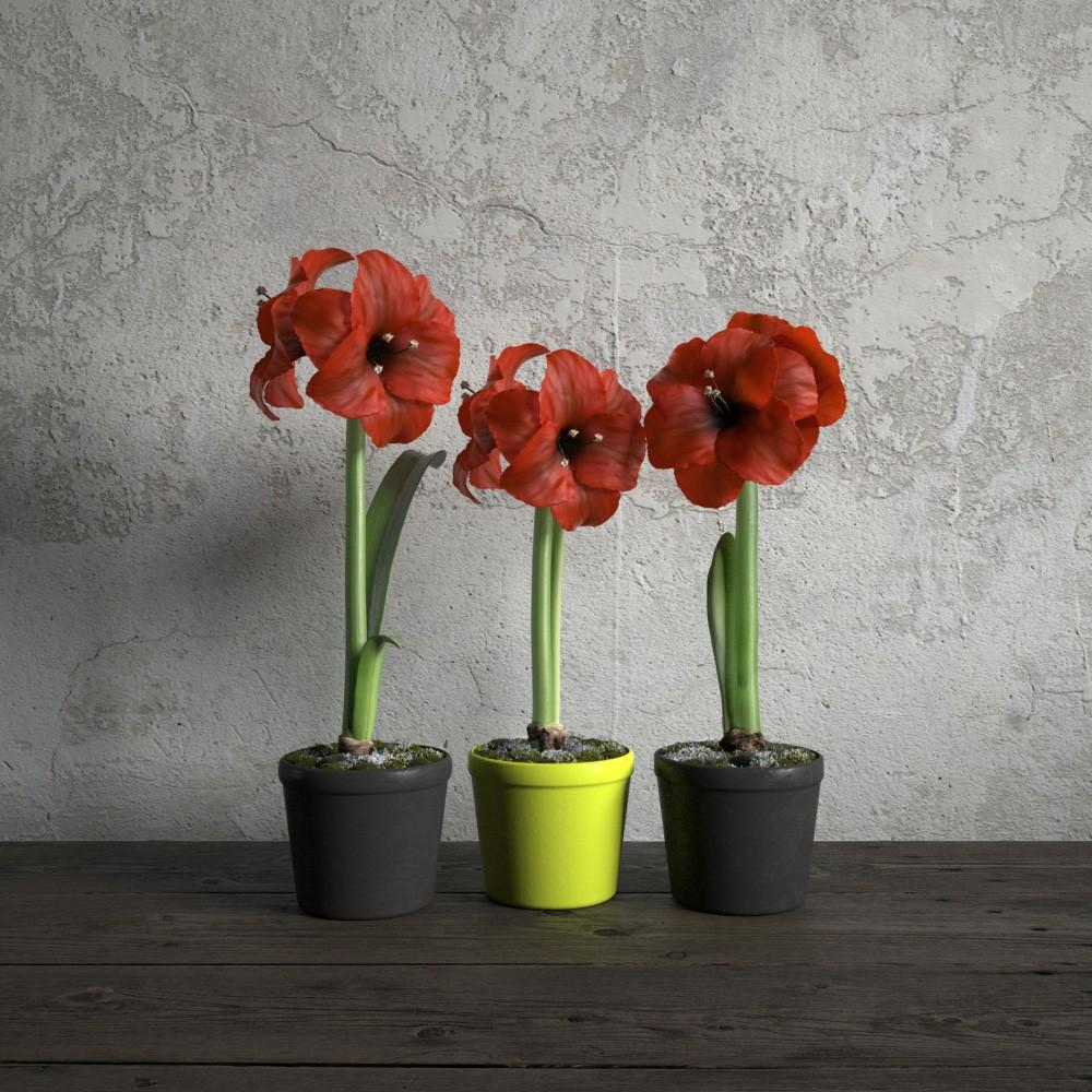 plant 7 AM173 Archmodels