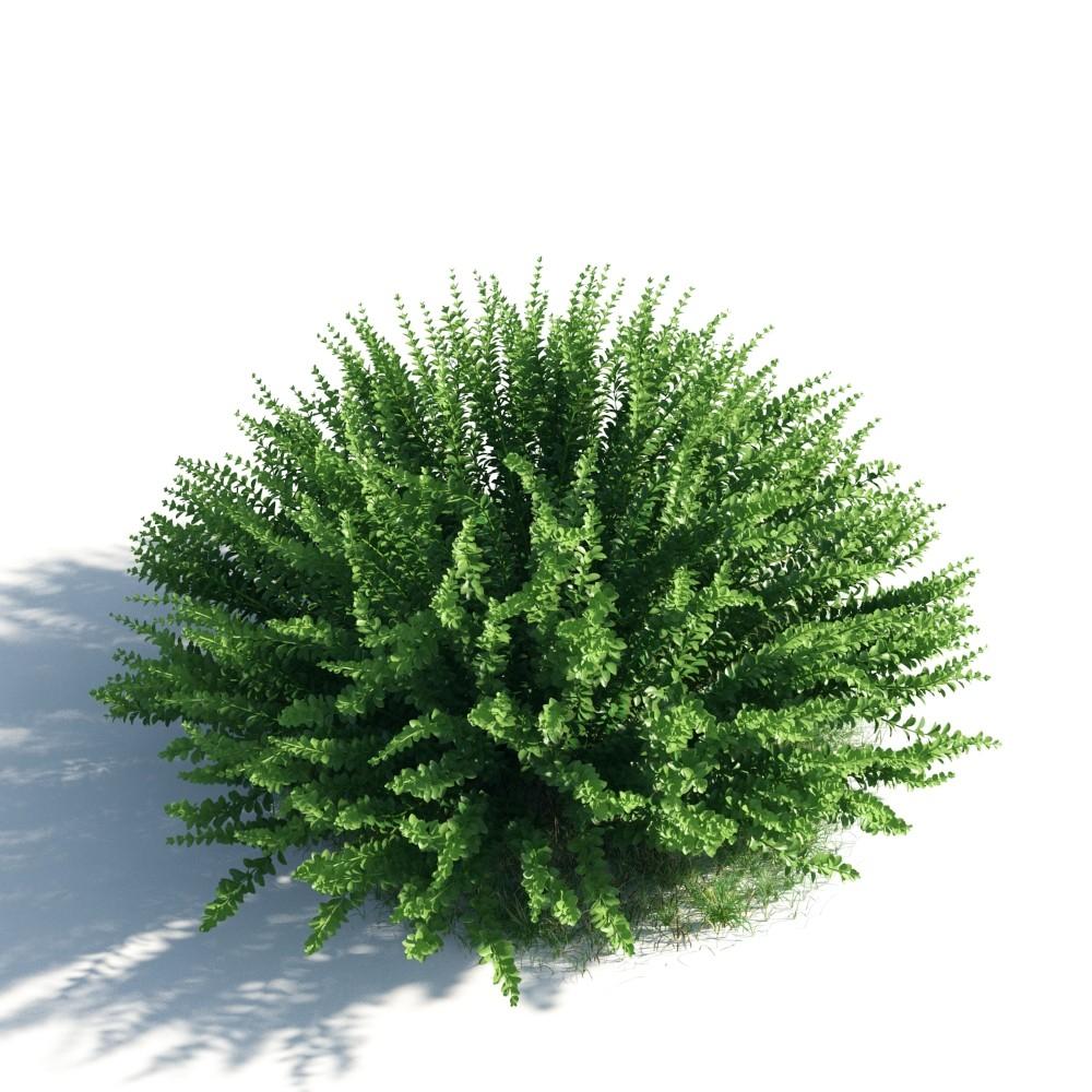 plant 45 AM183 Archmodels