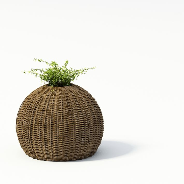 Plant 63 AM24 Archmodels