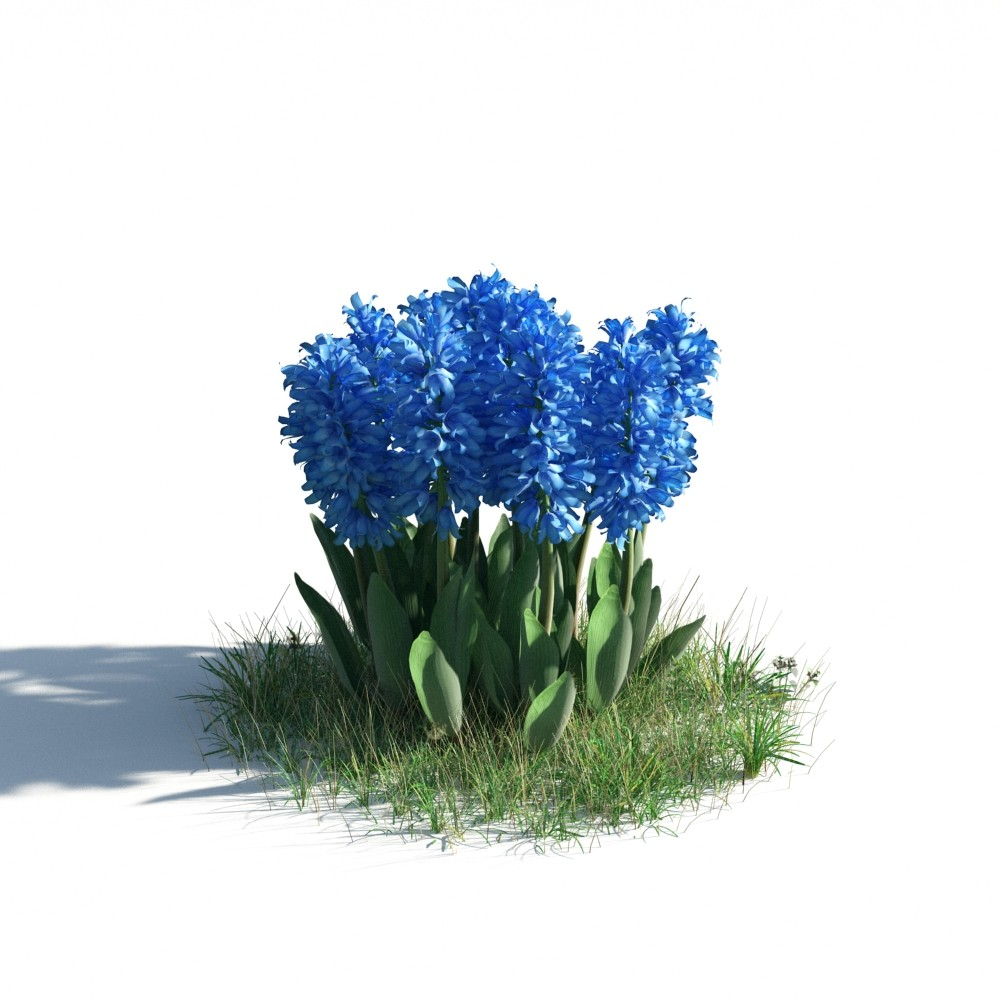 plant 24 AM183 Archmodels