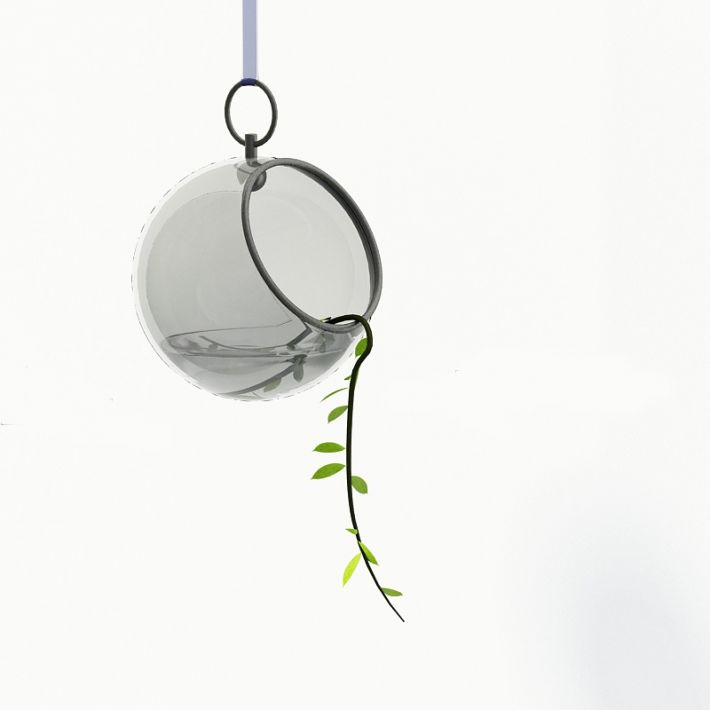 Plant 54 AM24 Archmodels
