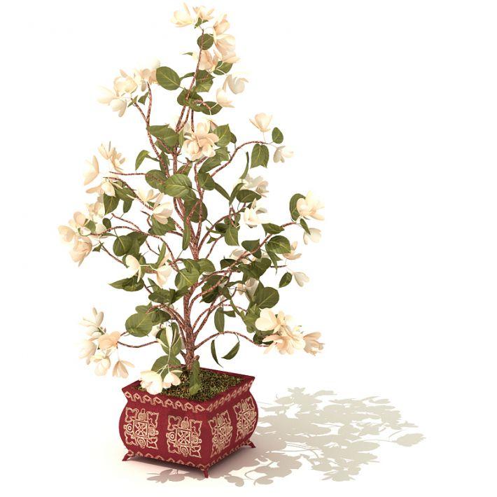 plant 42 AM41 Archmodels