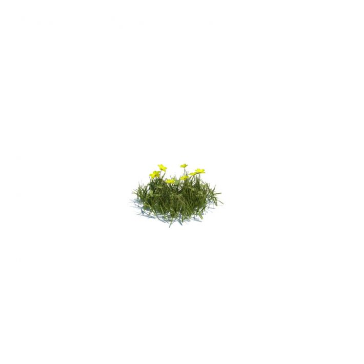 simple grass small 118 am124