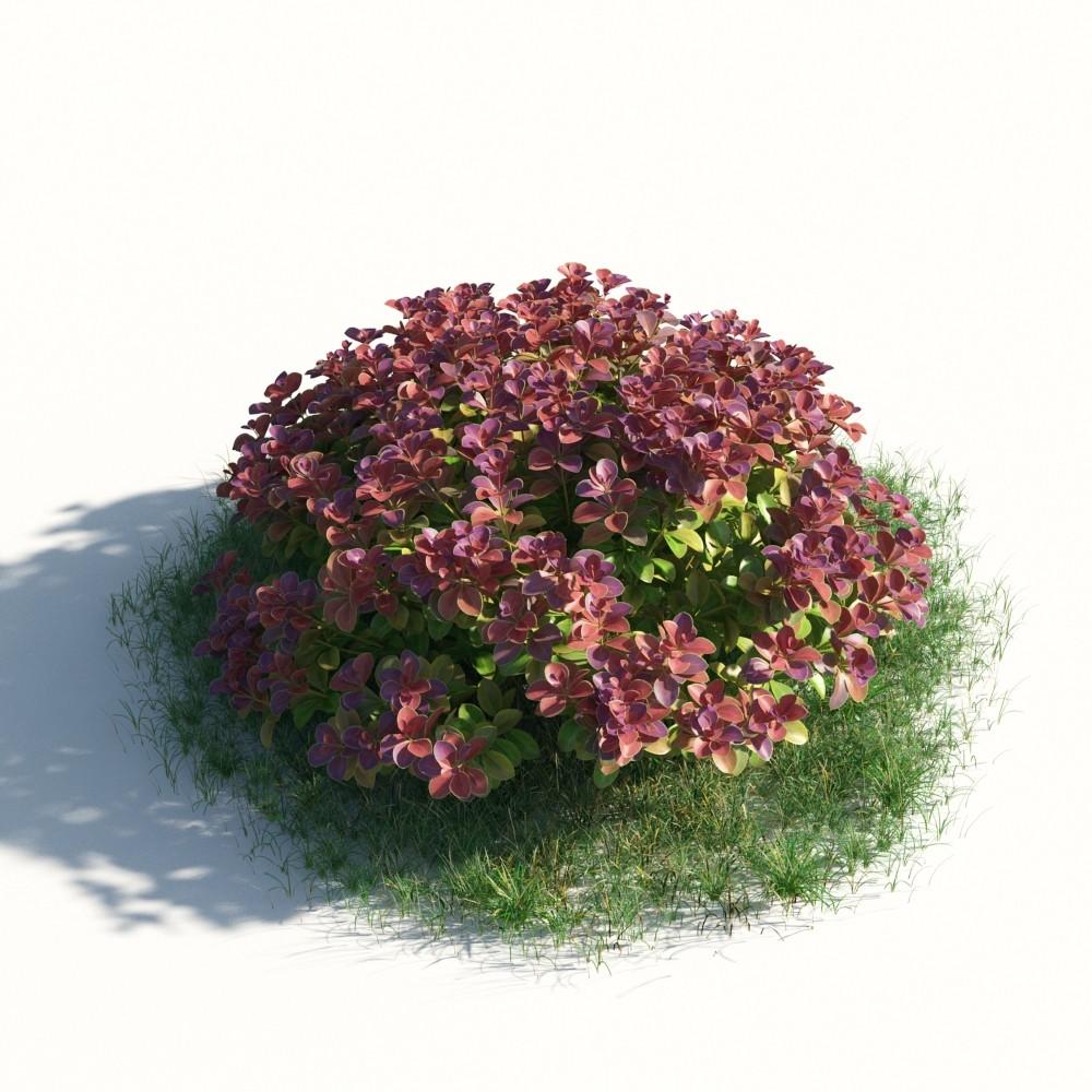 plant 49 AM183 Archmodels