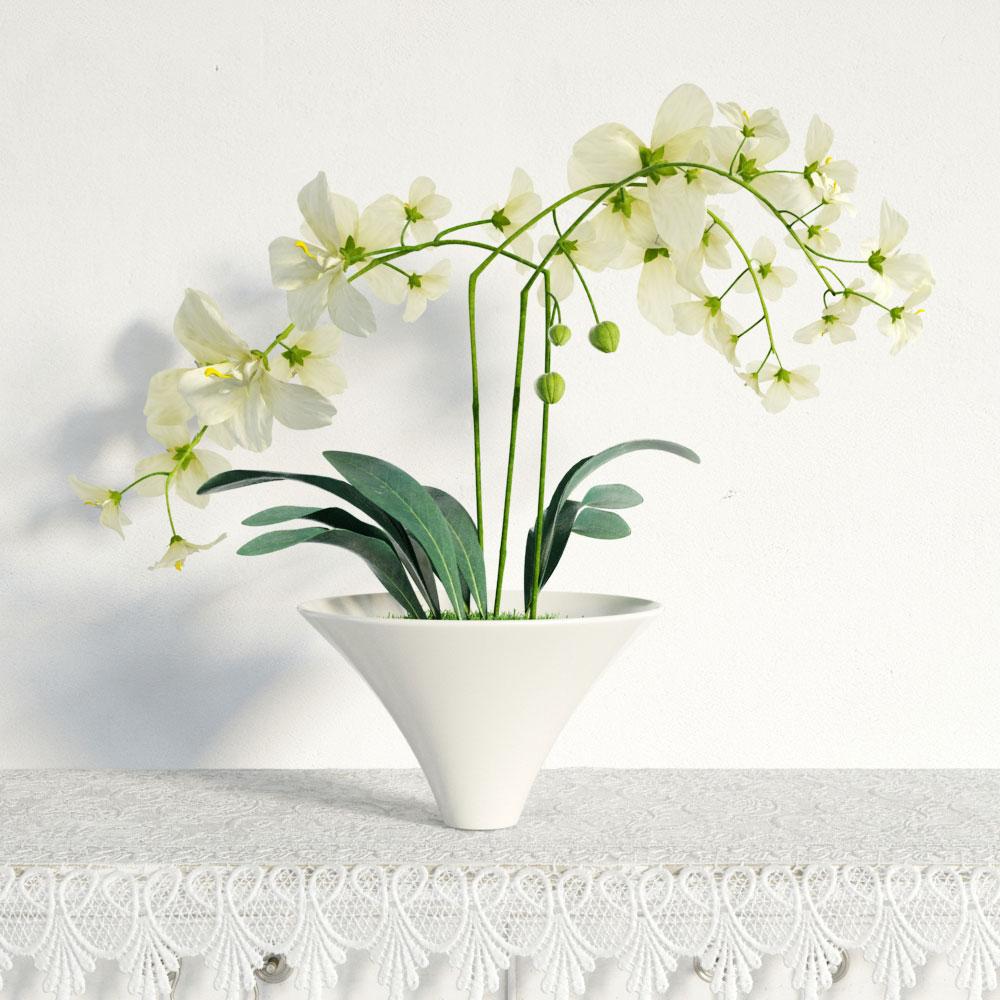 plant 5 AM141 Archmodels