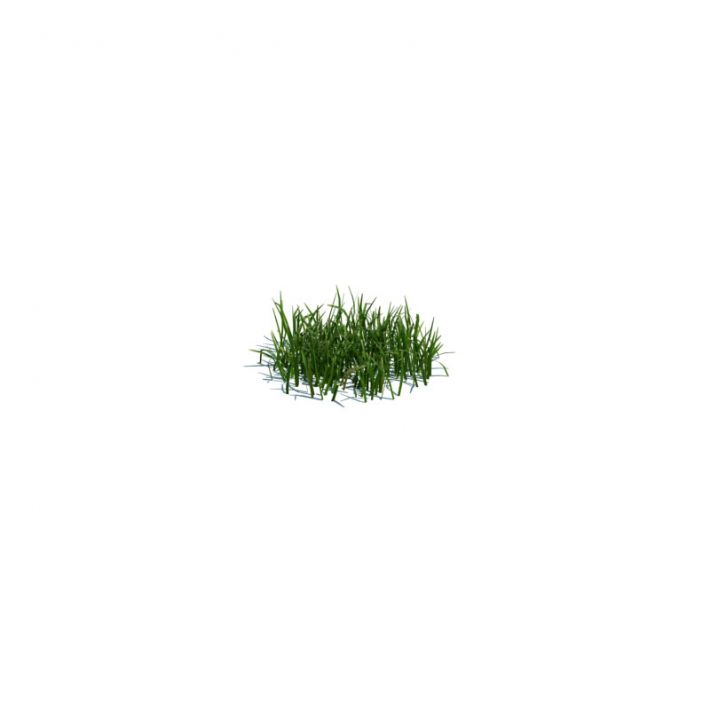 simple grass small 106 AM124 Archmodels