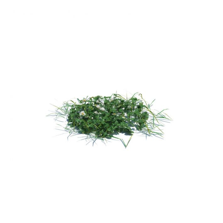 simple grass medium 2 AM126 Archmodels