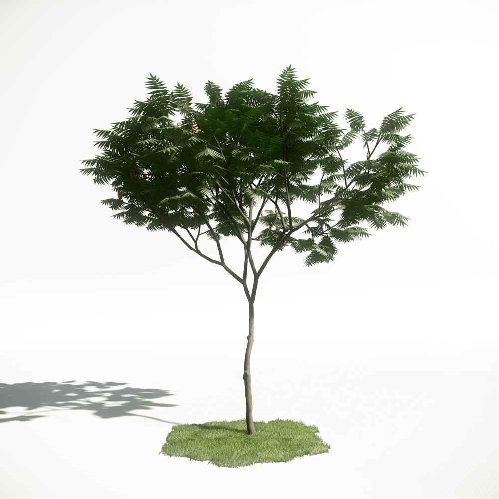 Tree 5 AM1 for CryEngine Archmodels
