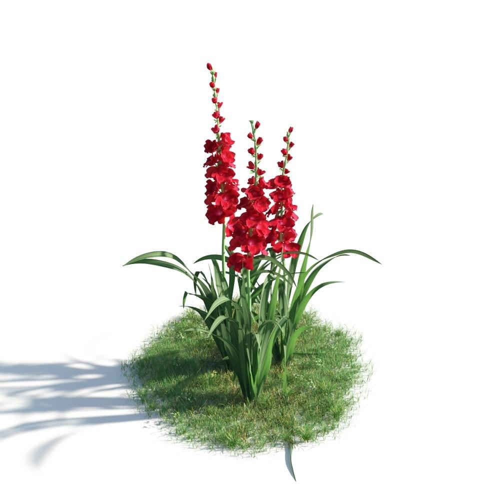 plant 42 AM183