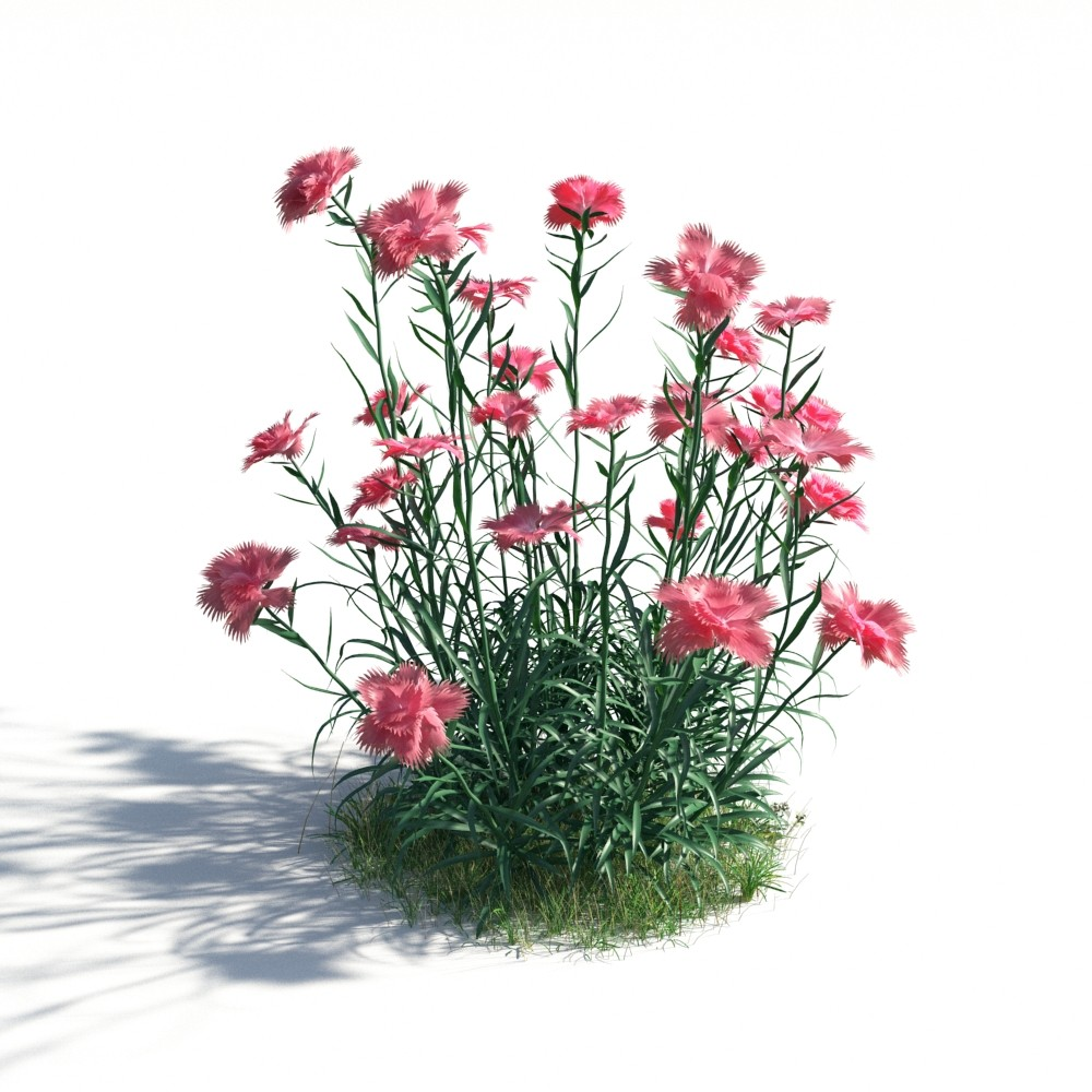 plant 13 AM183 Archmodels