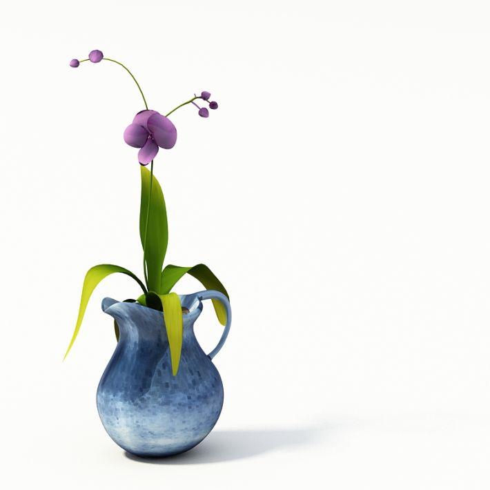 Plant 48 AM24 Archmodels