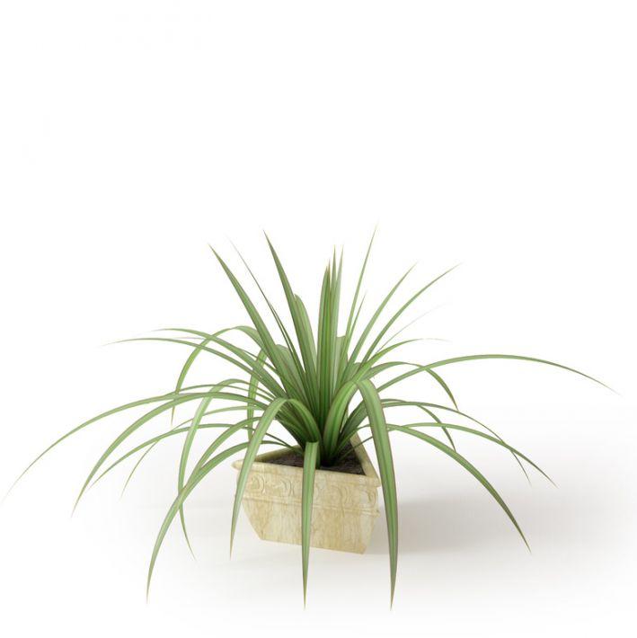 Plant 02 Archmodels vol. 66